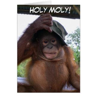 Carte Moly saint obtenant le vieil animal mignon