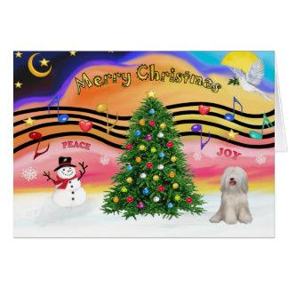 Carte Musique 2 de Noël - Terrier tibétain (blanc)