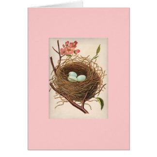 Carte nid d'oiseaux