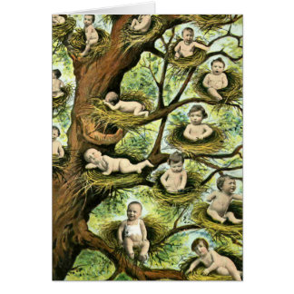 Carte Nids de bébé dans les arbres