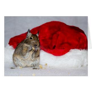 Carte Noël de casquette de Degu et de Père Noël