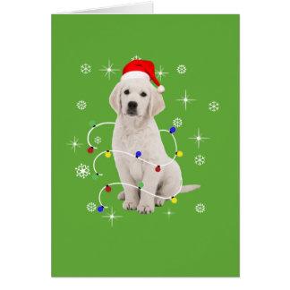 Carte Noël de vacances de chiot de golden retriever