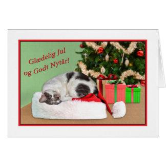 Carte Noël, Glædelig juillet, le danois, chat de sommeil