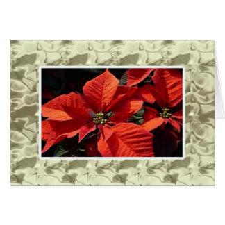 Carte Noël :  Poinsettia