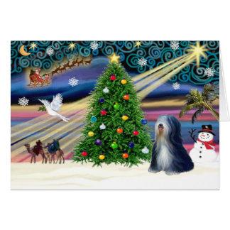 Carte Noël Terrier tibétain magique (noir-blanc)