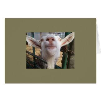 Carte Note de chèvre