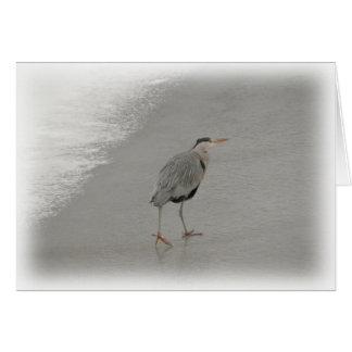 Carte Oiseau sur la plage