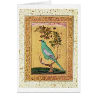 Carte Oiseau vert, Mughal (gouache sur le papier)