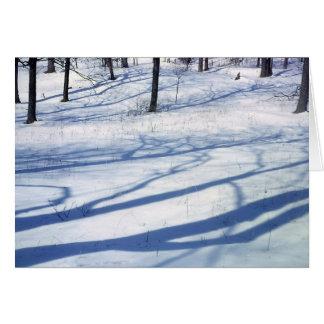 Carte Ombres d'hiver