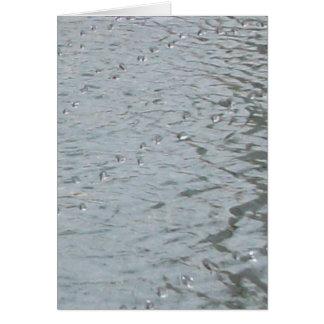 Carte Ondulations de l'eau