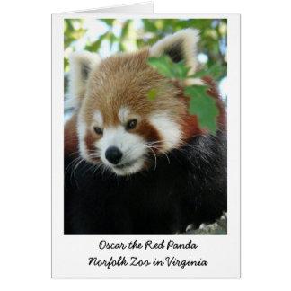 Carte Oscar le panda rouge