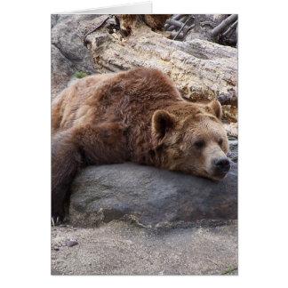 Carte Ours gris se reposant sur la roche