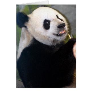 Carte panda