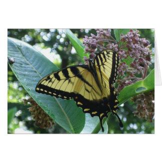 Carte Papillon de machaon I sur le Milkweed chez