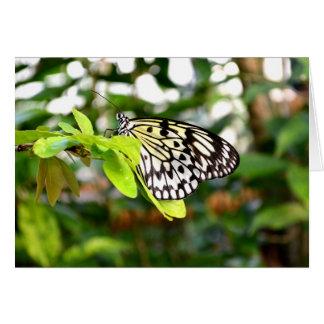 Carte Papillon de papier de cerf-volant