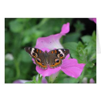 Carte Papillon se reposant sur les fleurs roses