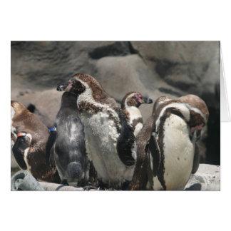 Carte Partie de pingouin
