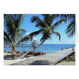Carte Paumes et pilier à Belize