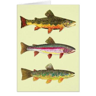 Carte Pêche de mouche de truite