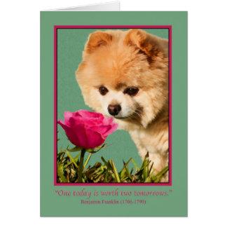 Carte Pensant à vous, au chien de Pomeranian et à la