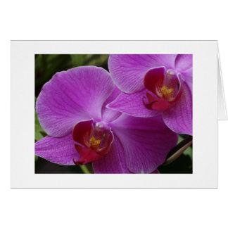 Carte Perfection d'orchidée
