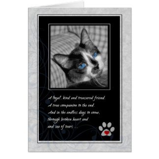 Carte Perte de sympathie d'animal familier de chat -