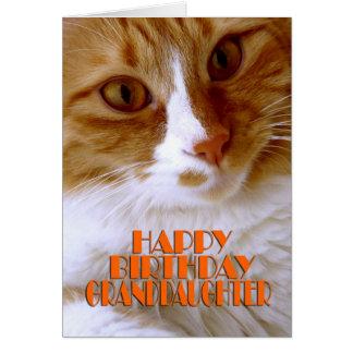 Carte Petite-fille de joyeux anniversaire - chat doux