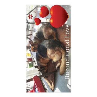 Carte photo de chien de berger allemand photocarte