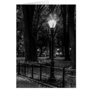 Carte Photo noire et blanche de paysage de Central Park