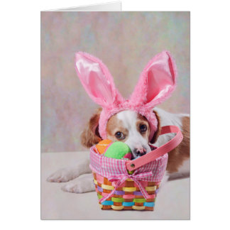 Carte Photographie de chien avec les oreilles roses de