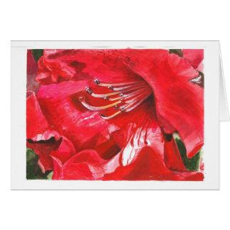 Carte Plan rapproché de rhododendron