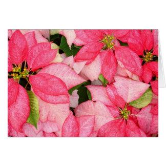 Carte Poinsettia de Noël