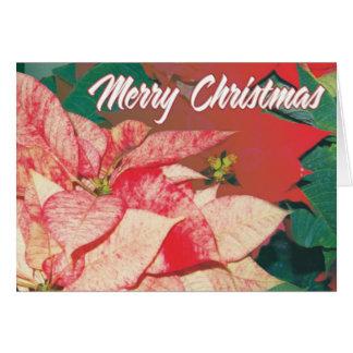 Carte Poinsettias de Joyeux Noël