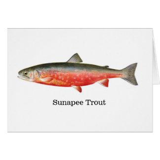 Carte Poissons de truite de Sunapee
