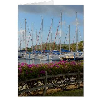 Carte Port de yacht de Gorda de Vierge