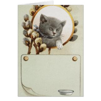 CARTE PORTRAIT DE CAT
