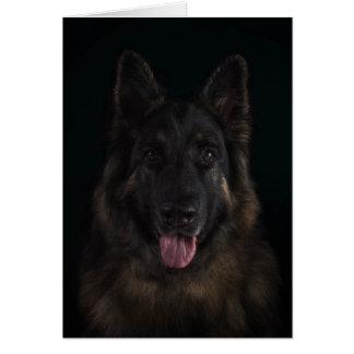 Carte Portrait de chien de berger allemand