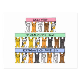 Carte Postale 16 juin chats d'anniversaire