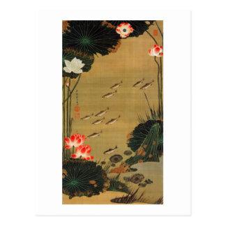 Carte Postale 17. 蓮池遊魚図, étang de 若冲 avec Lotus, Jakuchū