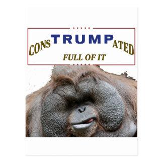 carte postale 2016 consTrumpated