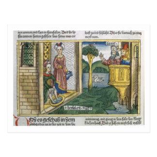 Carte Postale 2 Samuel 11 1-5 David voit Bathsheba se baigner,