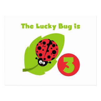 Carte Postale 3èmes T-shirts et cadeaux d'anniversaire d'insecte
