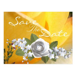 Carte Postale Affection chaude
