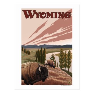 Carte Postale Affiche vintage de voyage de bison de la rivière