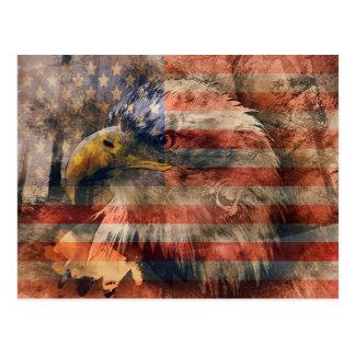 Carte Postale Aigle américain