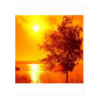 Carte Postale Ambre chaud de lever de soleil