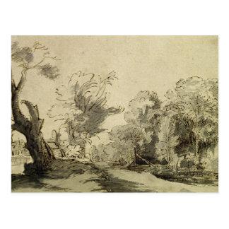 Carte Postale Aménagez en parc avec un chemin, arbre presque