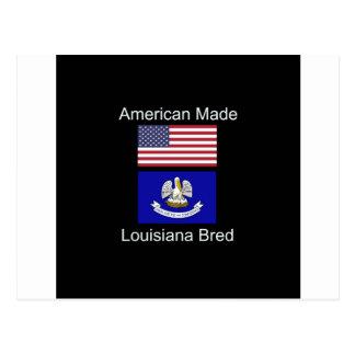 """Carte Postale """"Américain soutenu. La Louisiane a multiplié la"""""""