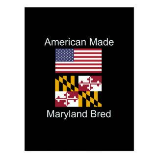 "Carte Postale ""Américain soutenu. Le Maryland a multiplié la"""