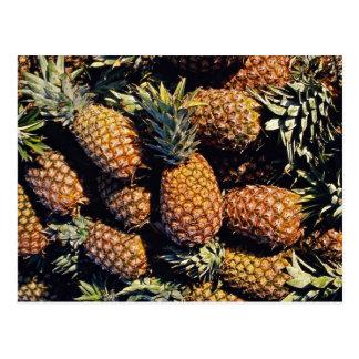 Carte Postale Ananas, Tulum, Mexique